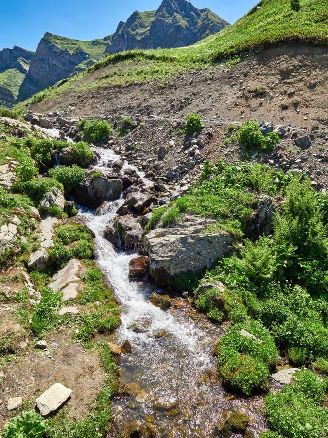 The Creek flödar högt i bergen på en klar sommardag arkivfoto