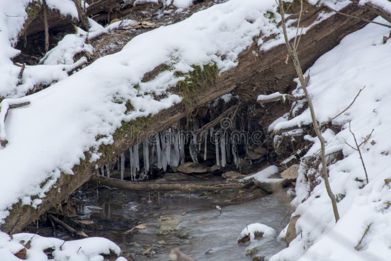 Creek in frozen winter landscape stock image