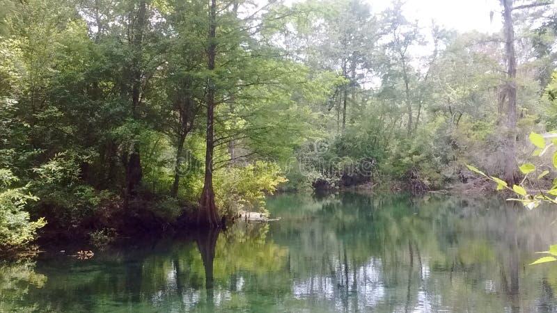 Creek fun stock images