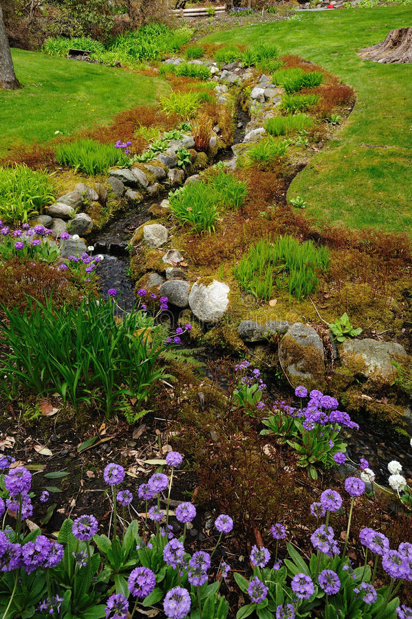 Download Creek and garden stock photo. Image of green, island - 13829394