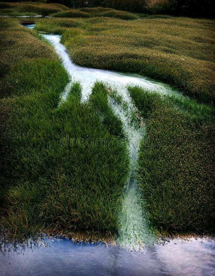 Free Creek In Grass Royalty Free Stock Photos - 9382728