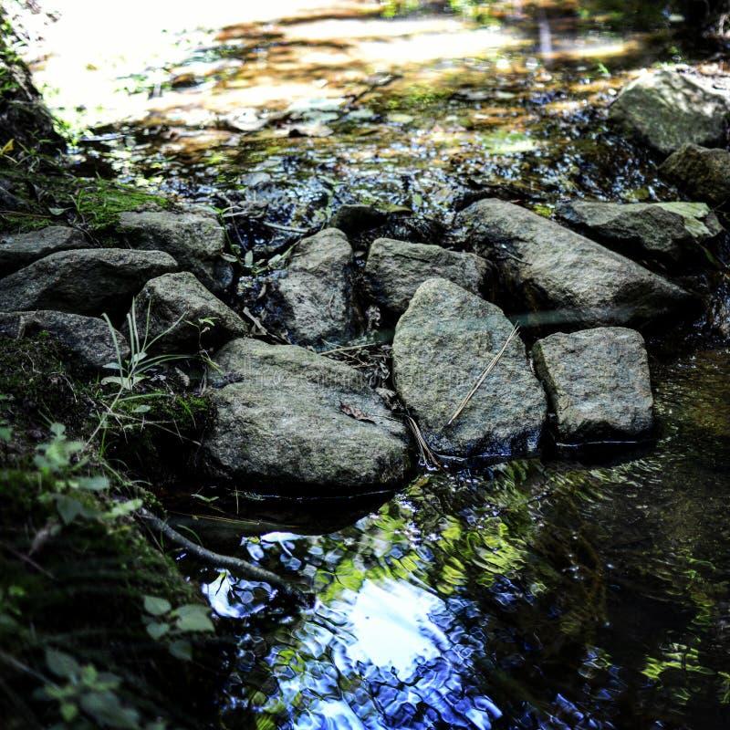 creek royaltyfri fotografi