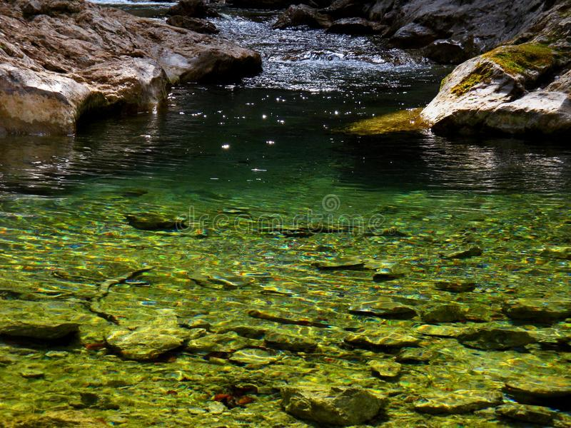 Download Creek in mountain canyon stock photo. Image of stone - 31310794