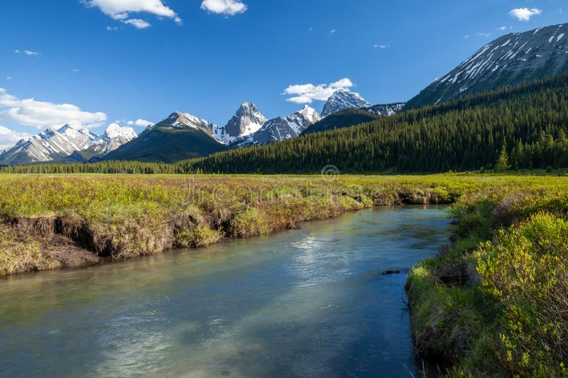 A creek and mountains in Kananaskis Alberta royalty free stock photo