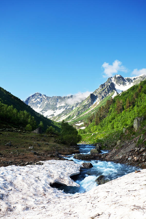 Creek in mountains royalty free stock images