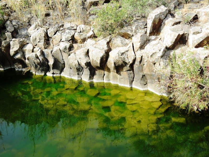 Creek in the mountains. Zavitan Creekת Hexagon volcanic pool royalty free stock photos