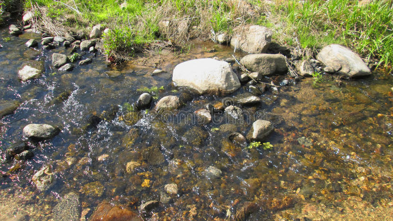 Creek. royalty free stock photos