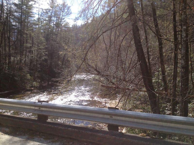 Creek Side stock photo