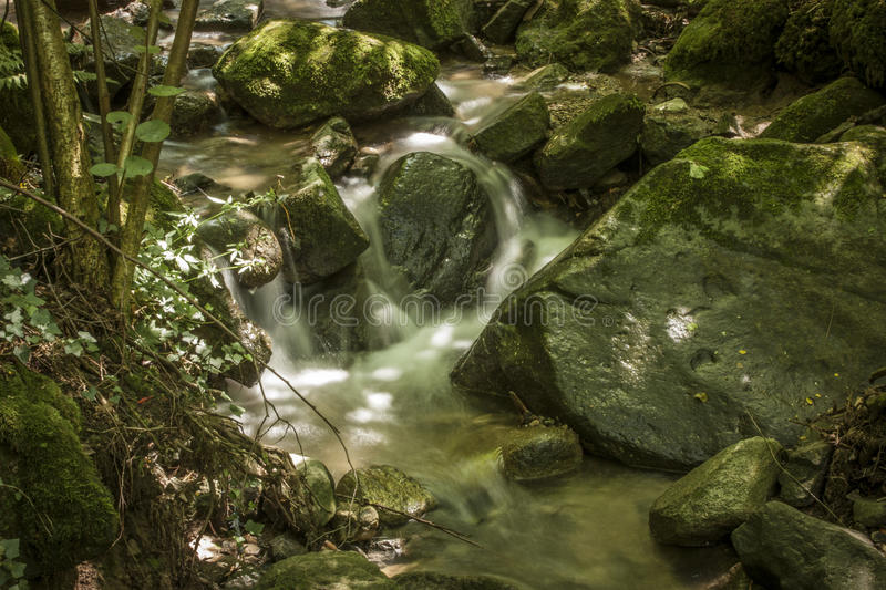 The creek. Small stream in a forest of northern Italy. Water flows through the rocks to get down. Schivanoia Falls, Teolo, Italy stock photo