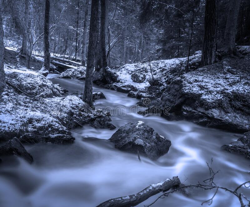 Creek in snowy forest stock photography
