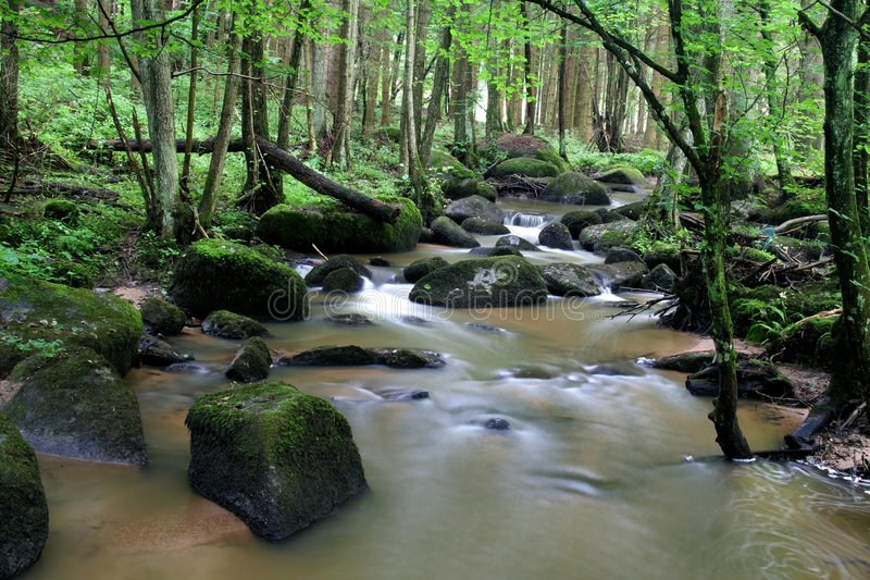 Download Creek in spring stock photo. Image of landscape, germany - 4833558