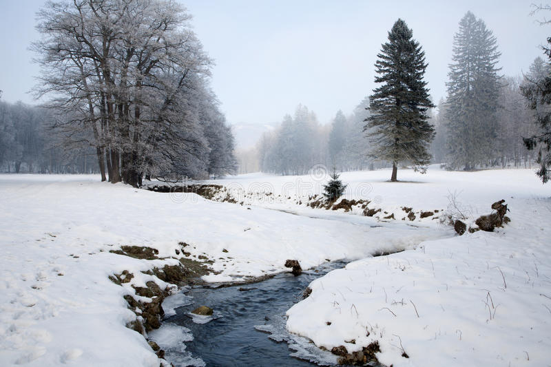 Creek in winter landscape royalty free stock photos