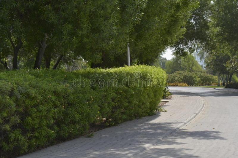 Creekside w Dubaj zdjęcia stock