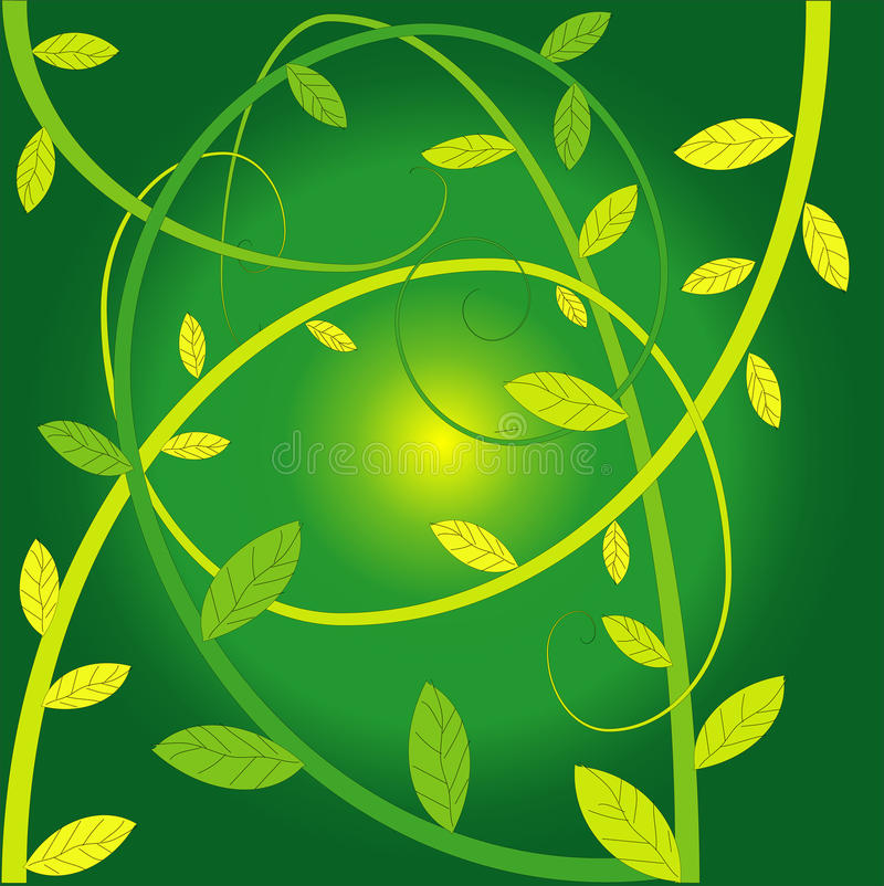 Download Creepers plants stock illustration. Image of greenish - 15152607