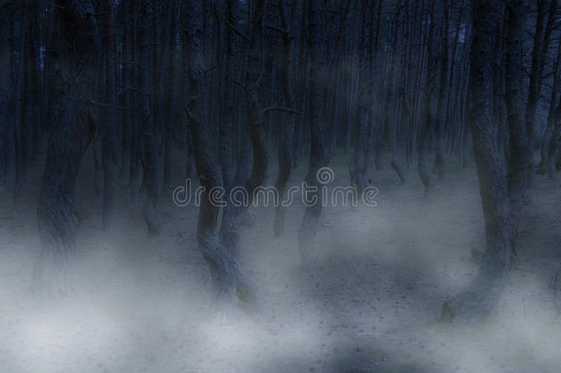 Creepy atmosphere royalty free stock photo