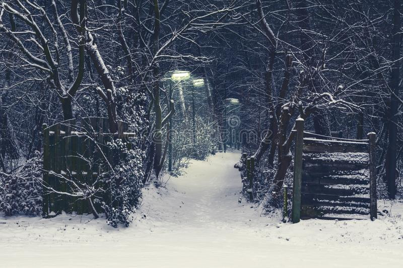 Creepy forest road with lighted lampposts on a dark and snowy winter night royalty free stock photos