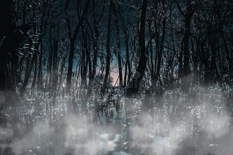A creepy Gothic moonlit foggy woods at night. Great for horror, Gothic, Creepy, and scary projects. A creepy Gothic moonlit foggy woods at night. Which will be royalty free stock image