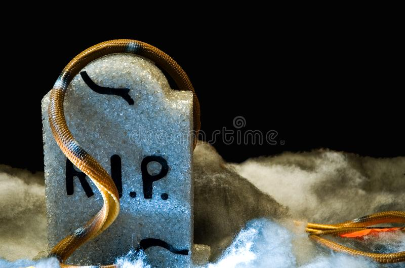 Download Creepy Gravestone stock image. Image of dread, death, foreboding - 1453895