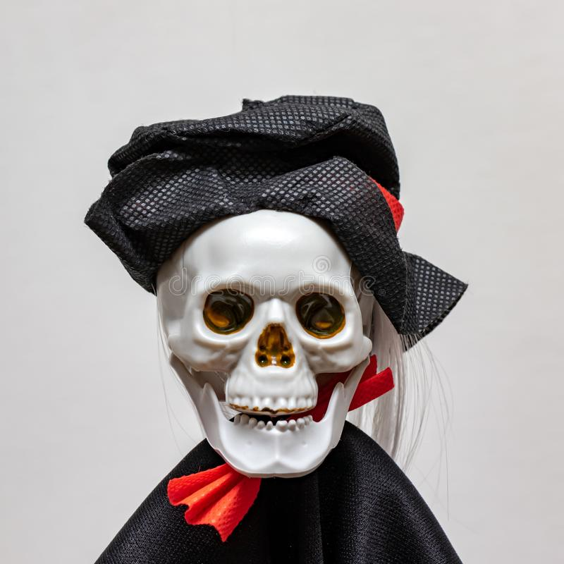 Creepy smiling skeleton skull wearing carnival costume for halloween close up on white background, death and mystery concept, royalty free stock images