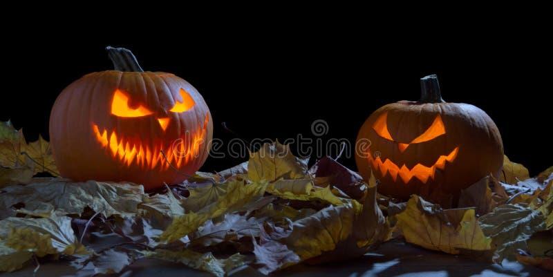 Creepy two pumpkins as jack o lantern among dried leaves on black stock image