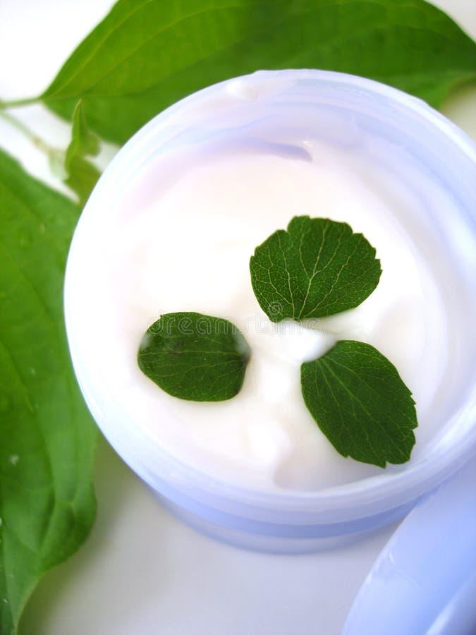 Crema cosmética con las hojas imágenes de archivo libres de regalías