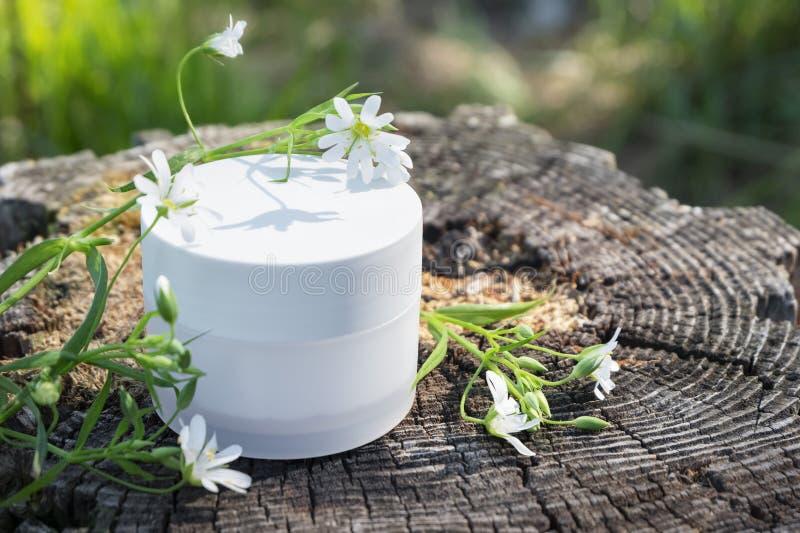 Crema cosm?tica natural del cuidado de piel Crema en naturaleza con las hojas verdes del helecho y las flores salvajes en un toc? fotos de archivo