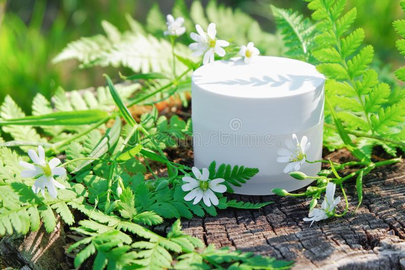 Crema cosm?tica natural del cuidado de piel Crema en naturaleza al aire libre con las hojas verdes del helecho y las flores salva fotos de archivo
