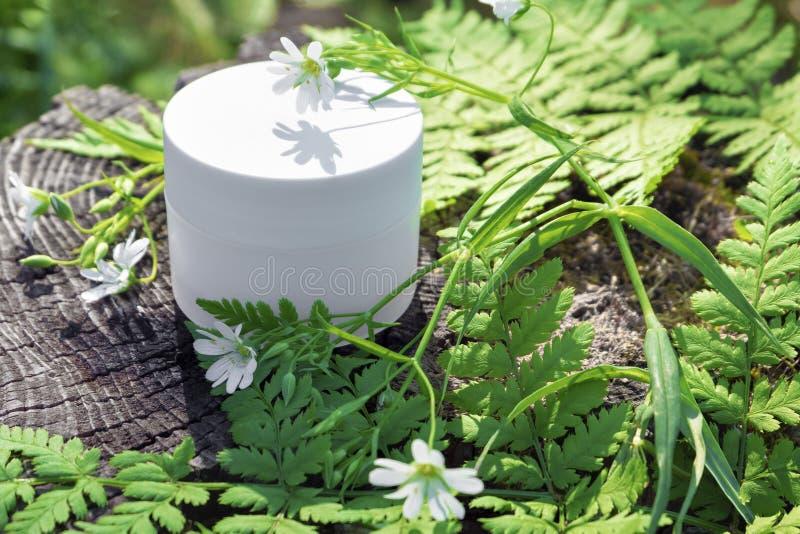 Crema cosm?tica natural para el cuidado de piel Crema en naturaleza con las hojas verdes del helecho y las flores salvajes fotos de archivo