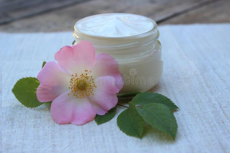 Crema cosmetica con il fiore del cinorrodonte fotografie stock libere da diritti