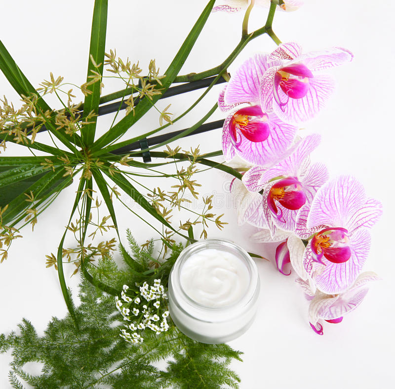 Crema de cara con las hierbas y las orquídeas rosadas imágenes de archivo libres de regalías