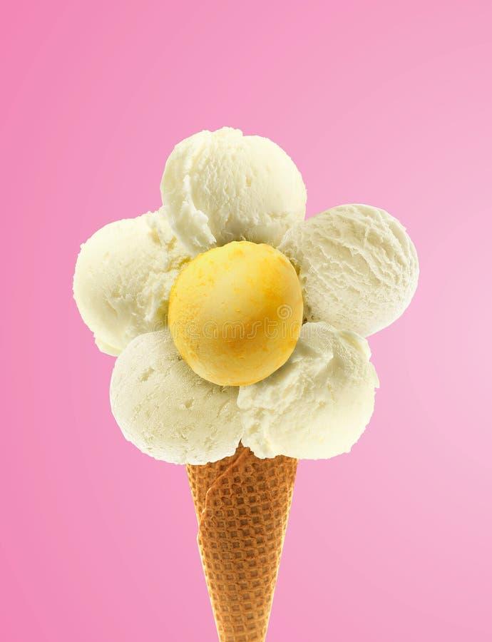 Crema de Daisy Ice imagenes de archivo