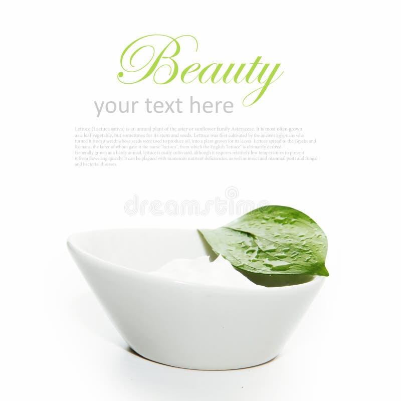 Crema del envase con la hoja verde aislada en blanco fotografía de archivo