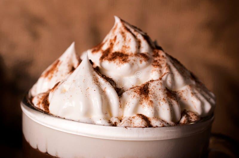 Crema del queso con cacao fotografía de archivo libre de regalías