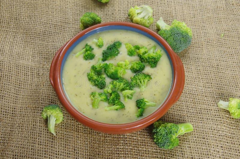 Crema della minestra del broccolo immagine stock libera da diritti