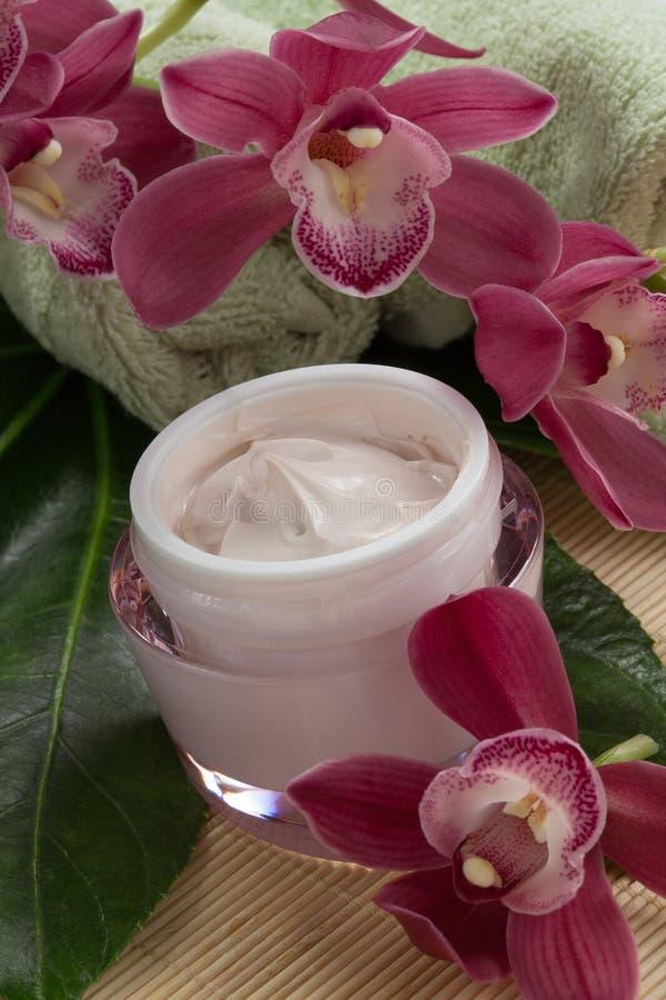 Crema di fronte ed orchidea dentellare fotografia stock