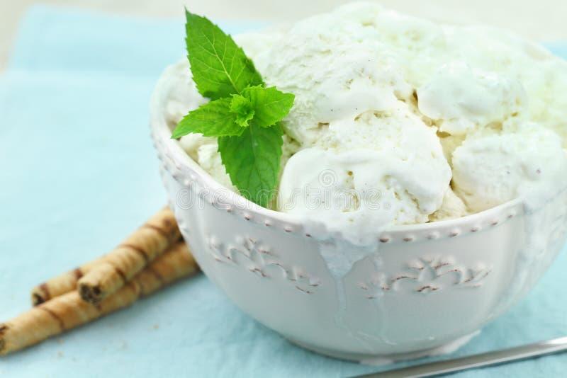 Crema di gelato alla vaniglia immagini stock