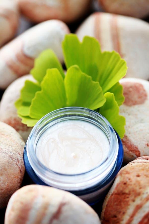 Crema hidratante de Ginko fotografía de archivo libre de regalías