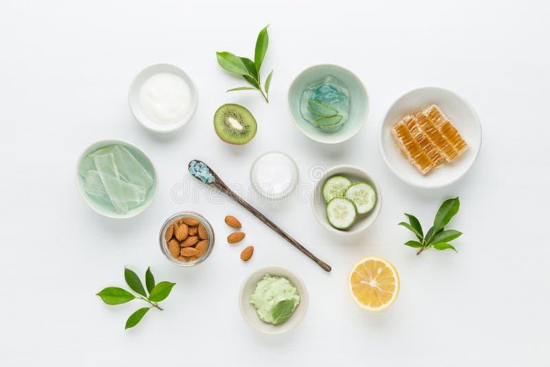 Crema igienica cosmetica di dermatologia di erbe per bellezza e lo skinca immagine stock