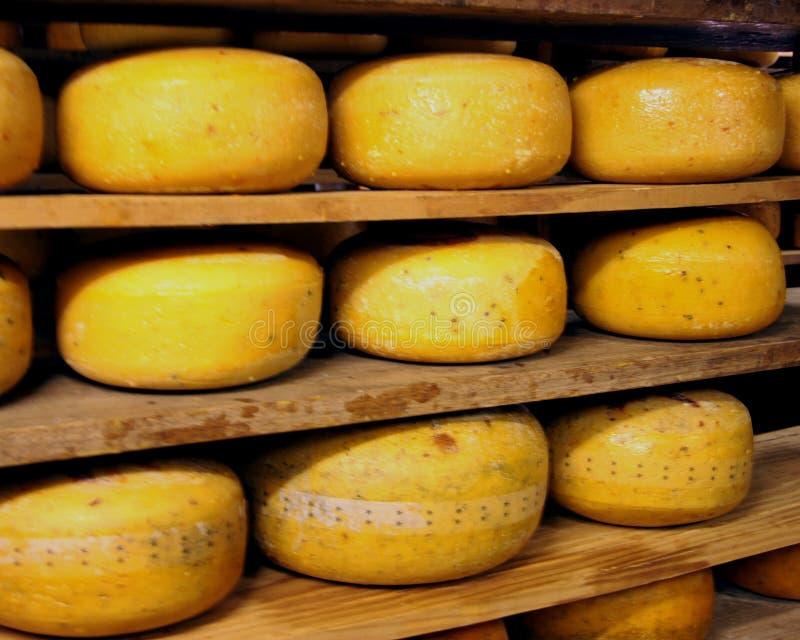 Cremagliera del formaggio fotografie stock libere da diritti