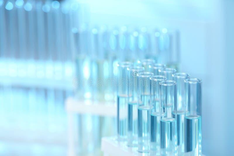 Cremalheira com os tubos de ensaio no laboratório, close up foto de stock