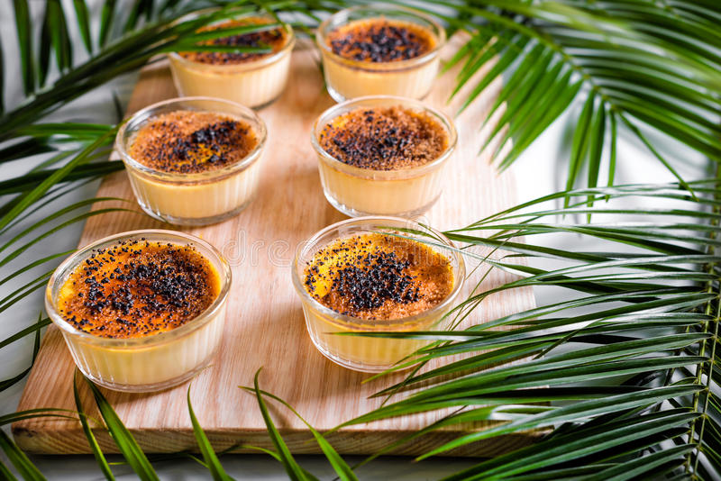 Creme brulee on wooden tray decorated with palm leaves. Traditional French vanilla cream dessert with caramelised sugar on top. Creme brulee on wooden tray royalty free stock image