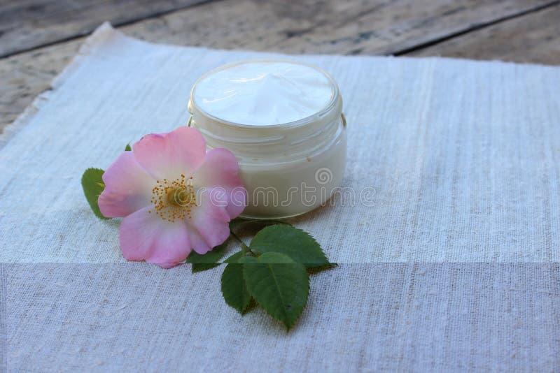 Creme cosmético com a flor do quadril cor-de-rosa fotos de stock
