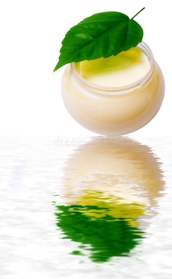 Creme da beleza e folha fresca sobre a água foto de stock royalty free