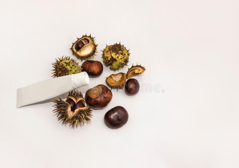 Creme da medicina das castanhas-da-índia na tabela de madeira branca fotografia de stock