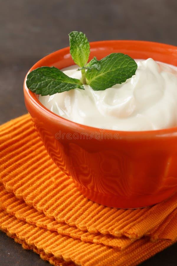 Creme de leite orgânico natural foto de stock