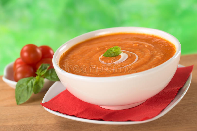 Creme do tomate fotos de stock royalty free