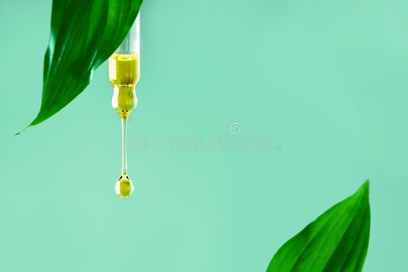 Creme hidratante do colagênio do soro do óleo da gota para o óleo da essência do tratamento da cara, vitamina C Beleza e conceito foto de stock royalty free