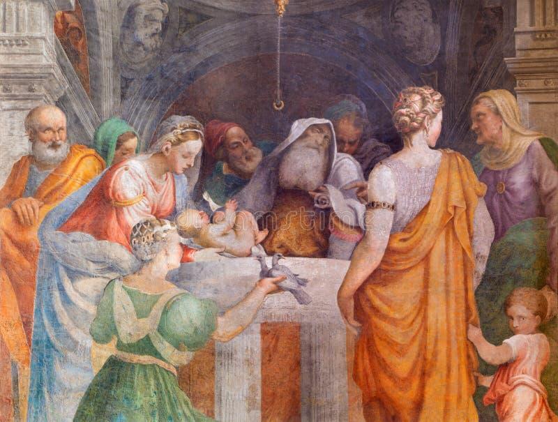CREMONA, ITALIEN, 2016: Das Fresko der Darstellung im Tempel in Chiesa-Di Santa Rita durch Giulio Campi (1547) stockfotografie