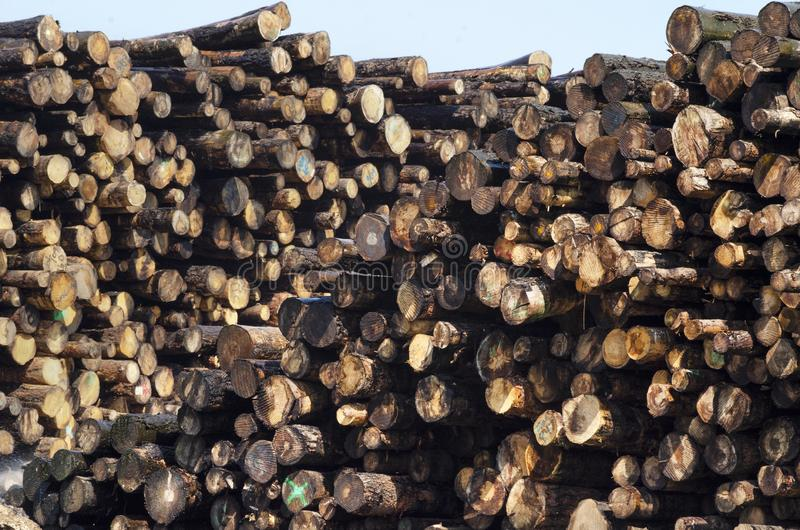 Creosote Soaked Logs - Close Up royalty free stock photography