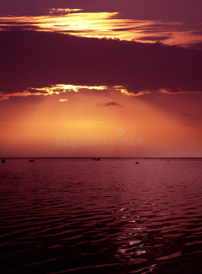 Crepúsculo Cor-de-rosa Imagem de Stock Royalty Free